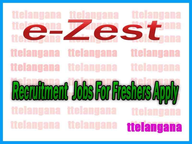 e-Zest Recruitment  Jobs For Freshers Apply