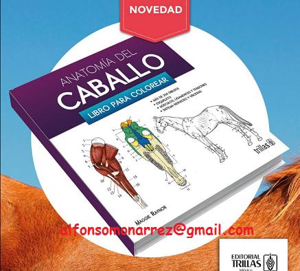 Vistoso El Libro Para Colorear De Anatomía 3ra Edición Bandera ...