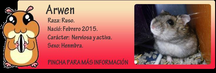 http://almaexoticos.blogspot.com.es/2015/04/arwen-hamster-sacada-de-la-perrera-en.html