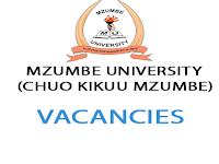 5 Job Opportunities At Mzumbe University