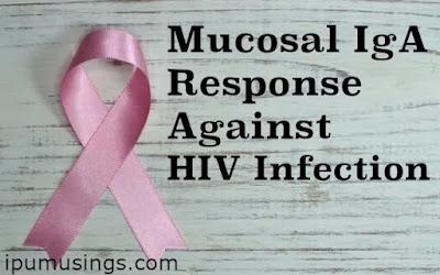 Mucosal IgA Response Against HIV Infection (#biochemistry)(#ipumusings)(#HIV)(#medicine)