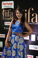 Madhu Shalini Looks Super Cute Slim trim Blue Choli Ghagra IIFA Utsavam Awards 46.JPG