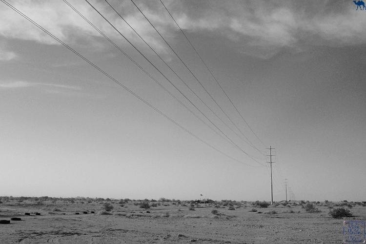 Le Chameau Bleu - Paysage de Salton Sea Californie du Sud USA