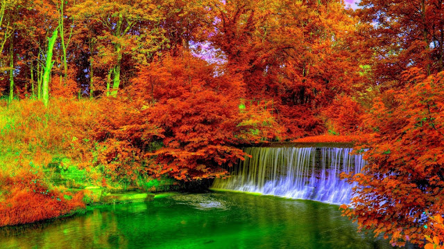 Waterval in het bos in de herfst