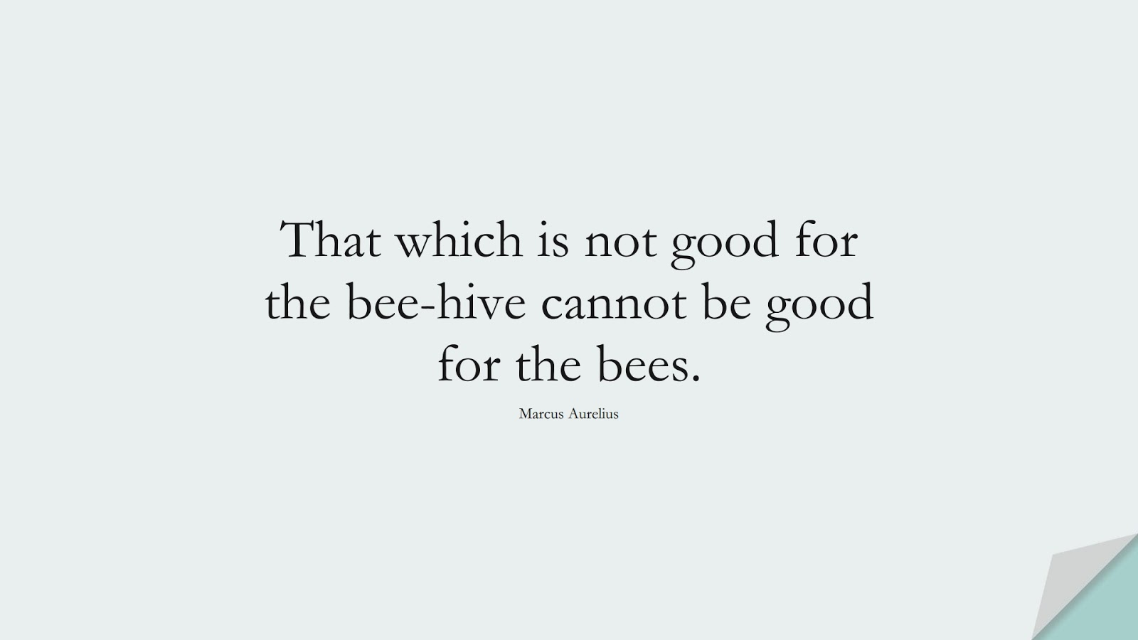 That which is not good for the bee-hive cannot be good for the bees. (Marcus Aurelius);  #MarcusAureliusQuotes