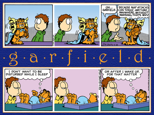 Garfield-wallpapers-garfield-2026921-500-375.jpg (500×375)