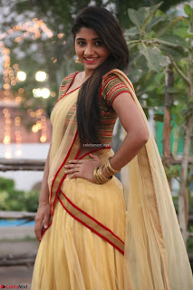 Actress Adhiti Menonin Saree gorgeous beautiful pics    032.jpg