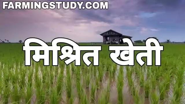 मिश्रित खेती क्या है, mixed farming in hindi, मिश्रित खेती की परिभाषा, मिश्रित खेती के लाभ, मिश्रित खेती की आवश्यकताएं, misrit kheti kya hai, farming