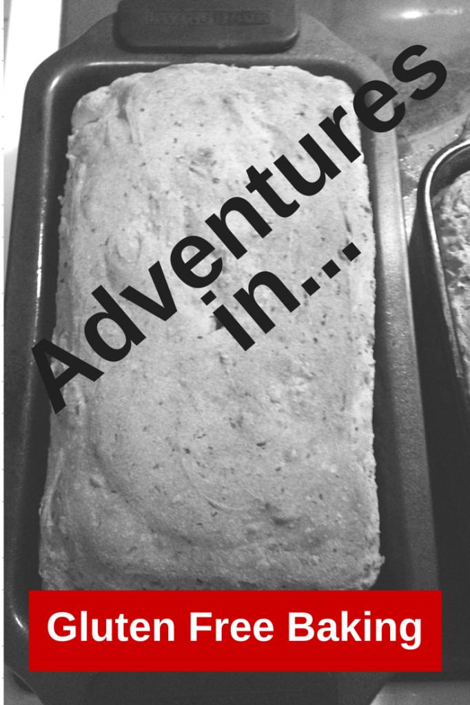 Adventures in... (2)