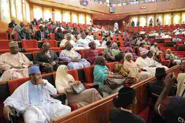 Senate set to expose banks used for MMM fraud