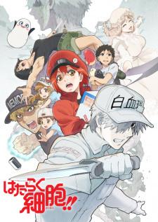 Hataraku Saibou Season 2