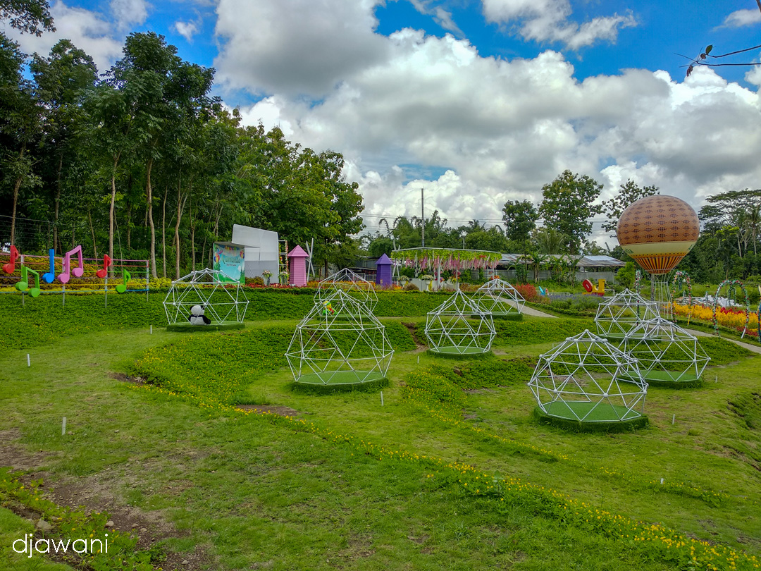 Alamanda Jogja Flower Garden Warna Warni Taman Bunga Kekinian Di Yogyakarta