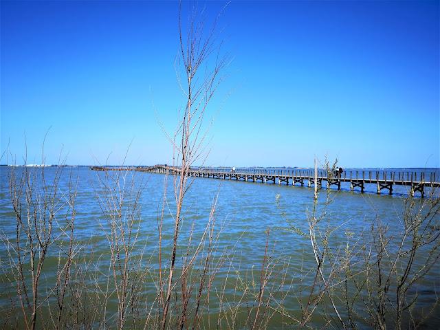pontile su lago