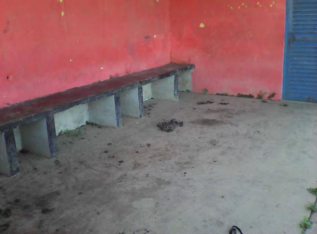 APURE: Pasan los años y el estadio de Morrones no recibe atencion adecuada en Alto Apure.