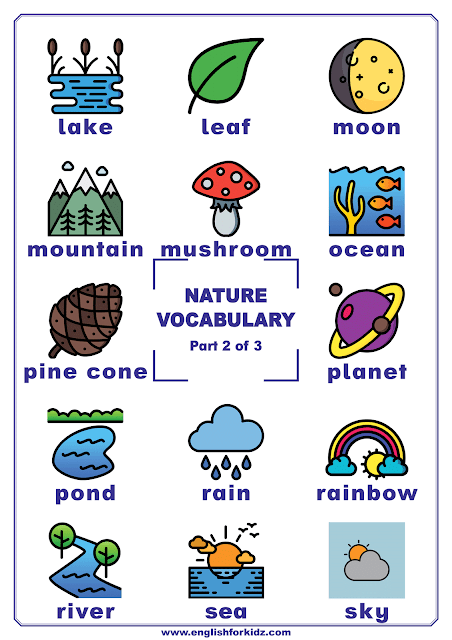Nature vocabulary words