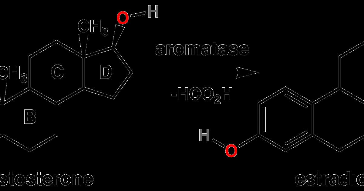 aromatizacion esteroides