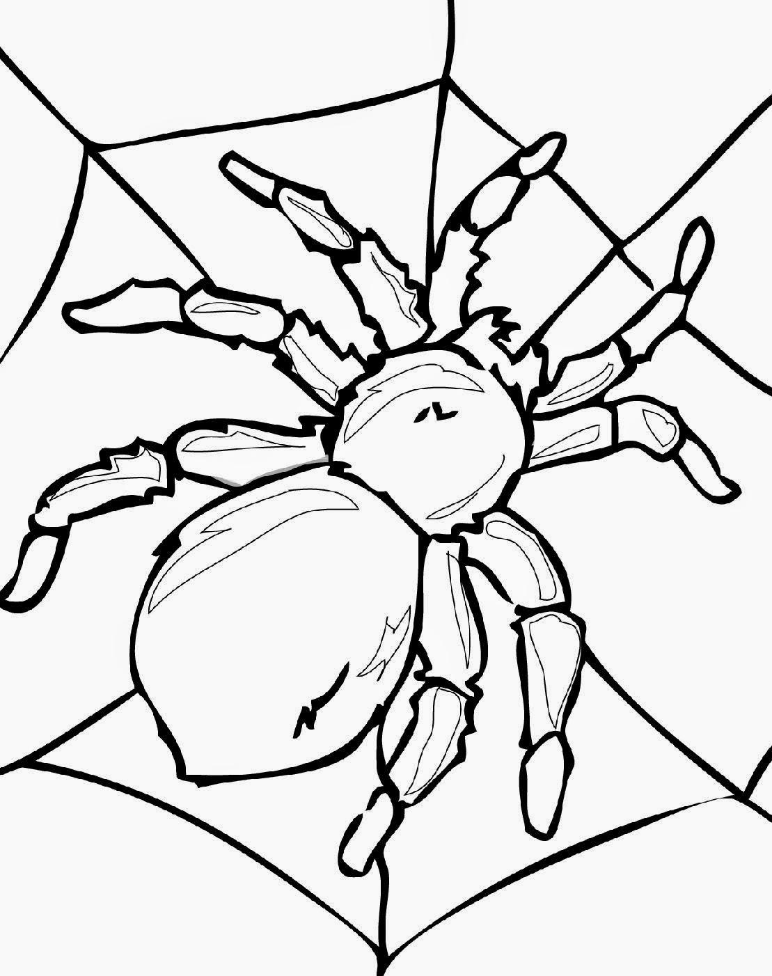 Bug Coloring Pages - Kidsuki