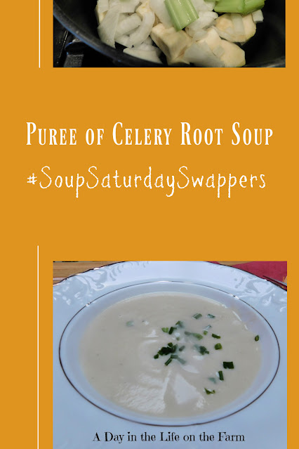 Puree of Celery Root Soup pin