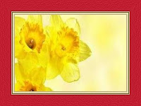 Yellow Flowers Dream Meaning and Interpretations – DREAMLAND