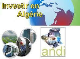 dèveloppement de l'investissement - ANDI