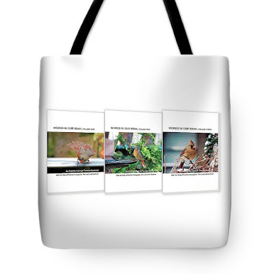 This is photograph features a tote bag that has an image of my book series printed on it. It is available for purchase via Fine Art America. https://fineartamerica.com/featured/words-in-our-beak-covers-patricia-youngquist.html?product=tote-bag