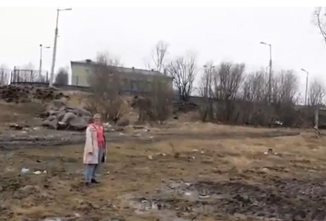 Весь двор в говне - видео из Мурманска