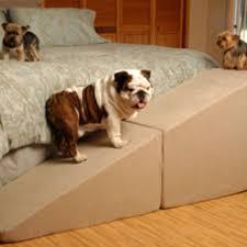 rampa para bulldog
