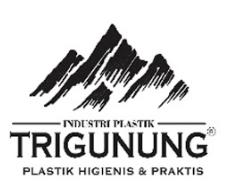 Karir Lampung di PT. Trigunung Padutama Bandar Lampung Januari 2018