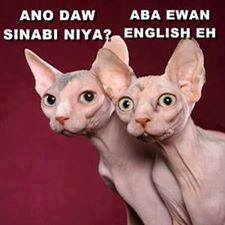 english daw eh