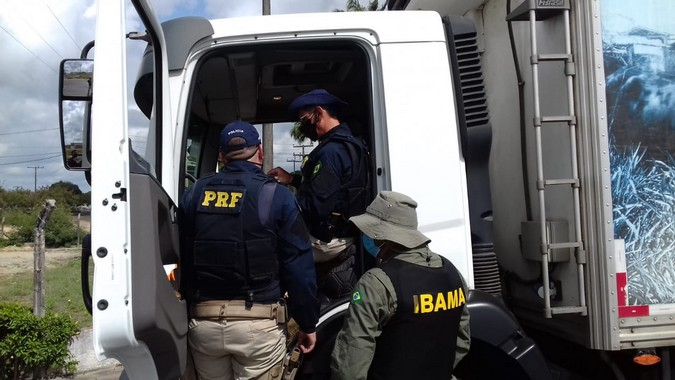 PRF e IBAMA fiscalizam uso de Arla 32 em caminhões na BR-101/AL