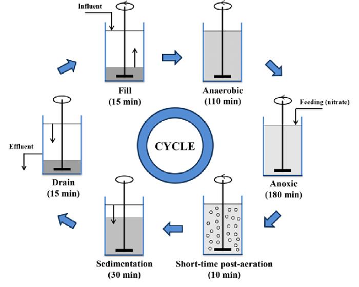 Secuencia de operaciópn o ciclo de funcionamiento de un reactor batch o intermitente