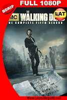 The Walking Dead: Temporada 5 (2014) Latino Full HD BDRIP 1080P - 2010
