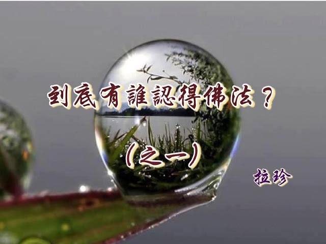 到底有誰認得佛法?(之一) ——與國際佛教僧尼總會大德們商讨