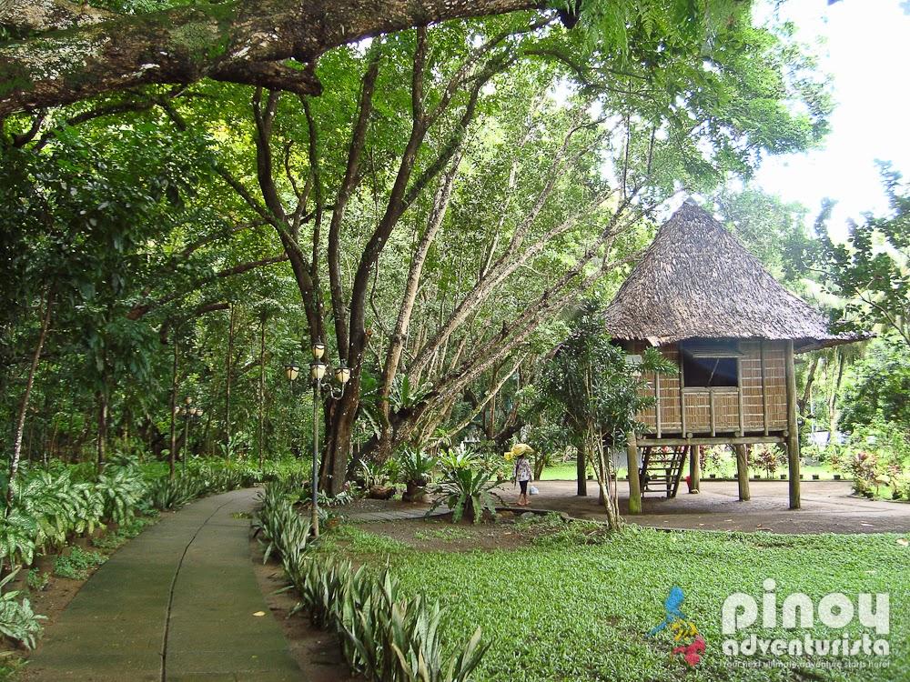 Museo ni Jose Rizal, Dapitan