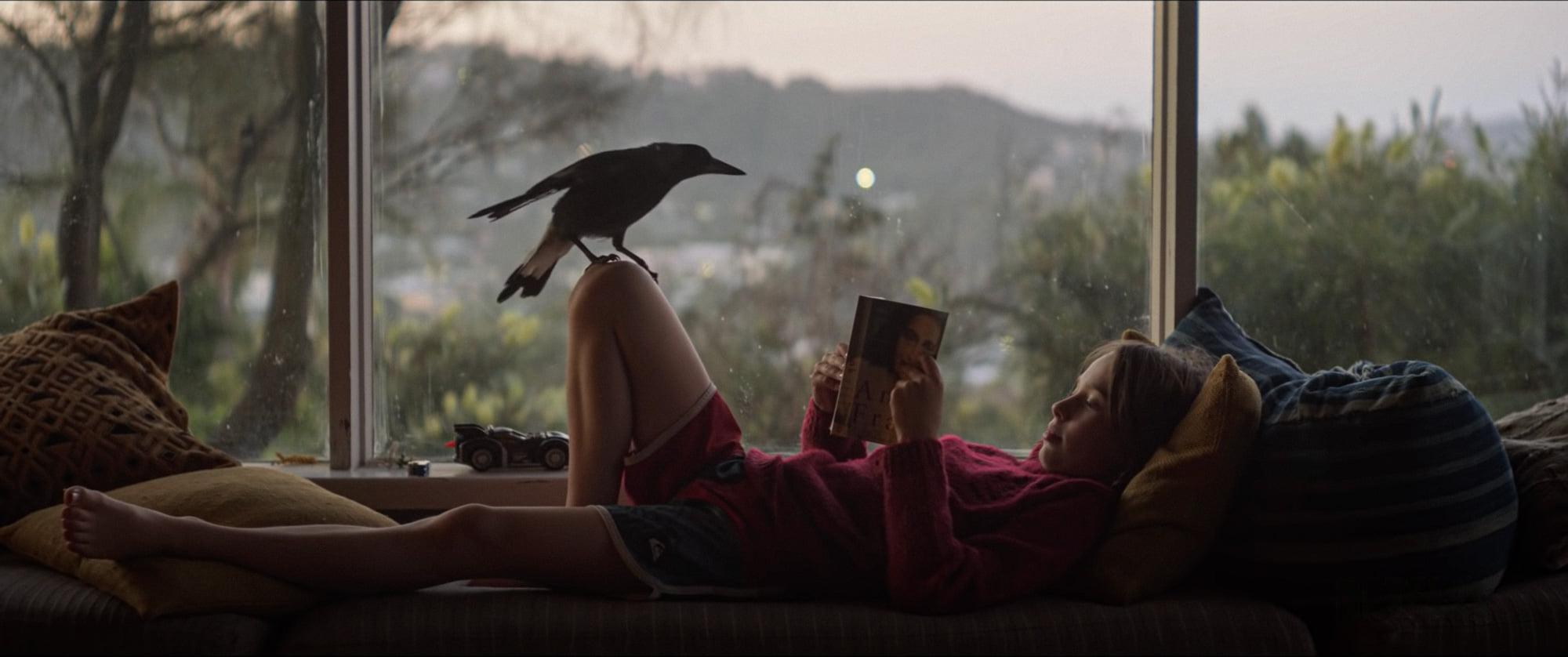 """Watch """"Penguin Bloom"""" 2021"""