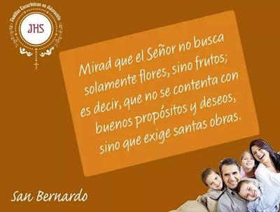 San Bernardo reflexiones