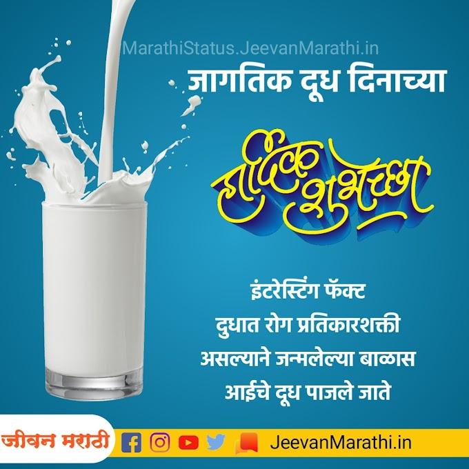 जागतिक दूध दिवस | world milk day