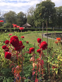 Red flowers in garden with grass and small stone building in background