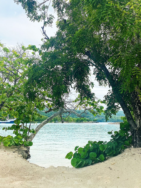 Goldeneye Resort Jamaica || Tori's Pretty Things