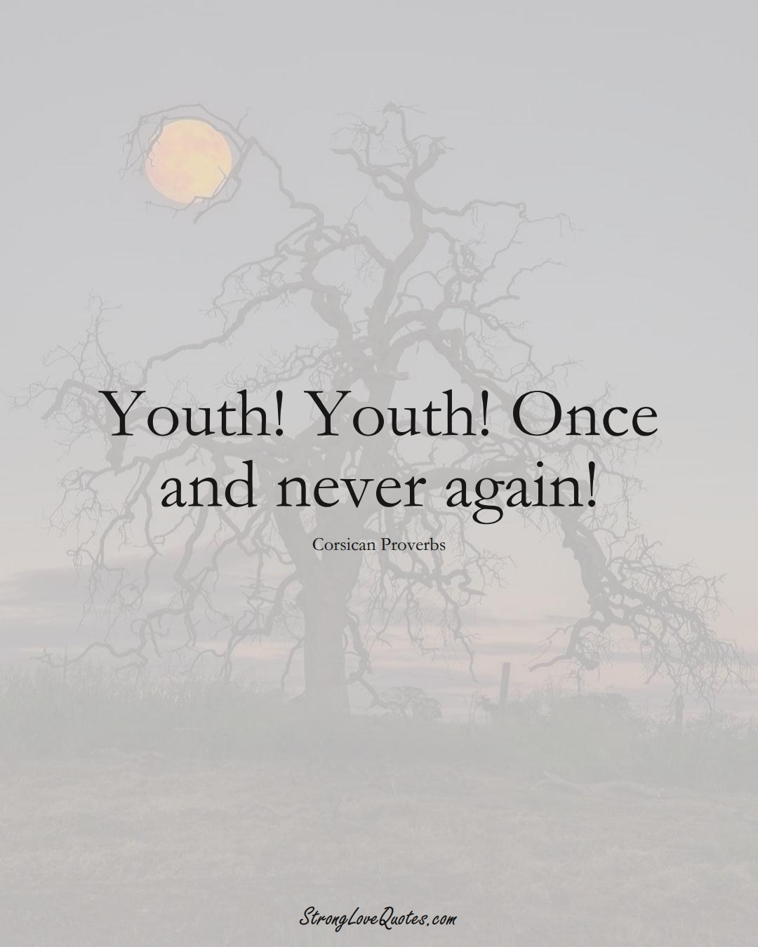 Youth! Youth! Once and never again! (Corsican Sayings);  #EuropeanSayings