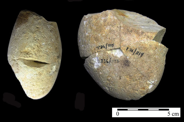 350,000-year stone found in Israel is oldest-known grinding tool found