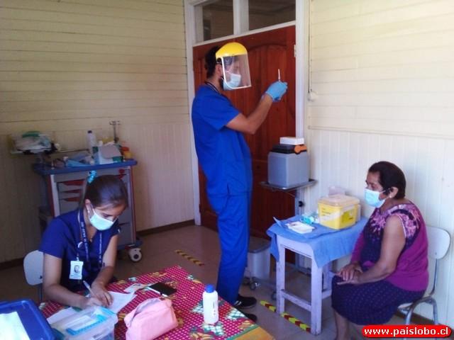 Vacunación rural