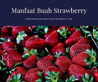 Buah Strawberry yang telah dipetik