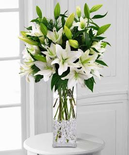 Gambar Bunga Lili Putih Yang Cantik_ White Lily