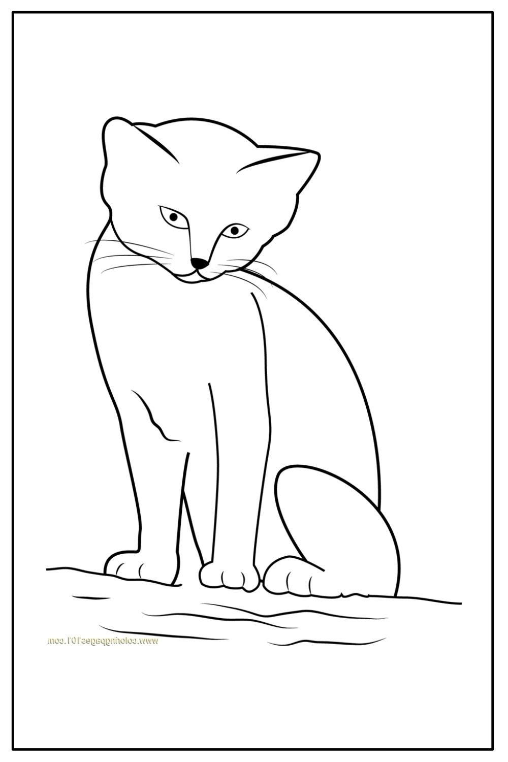 Download Wallpaper Coloriage chat assis