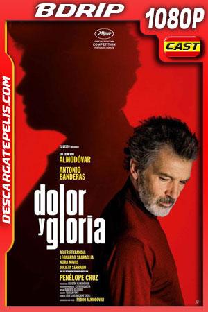 Dolor y gloria (2019) 1080p BDrip Castellano