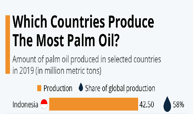 Which Countries Produce The Most Palm Oil? #infographic