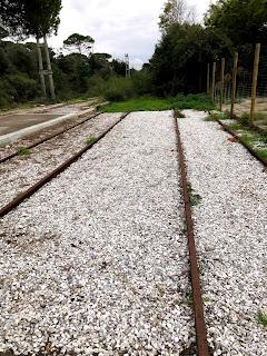 ピサの路面電車線路跡