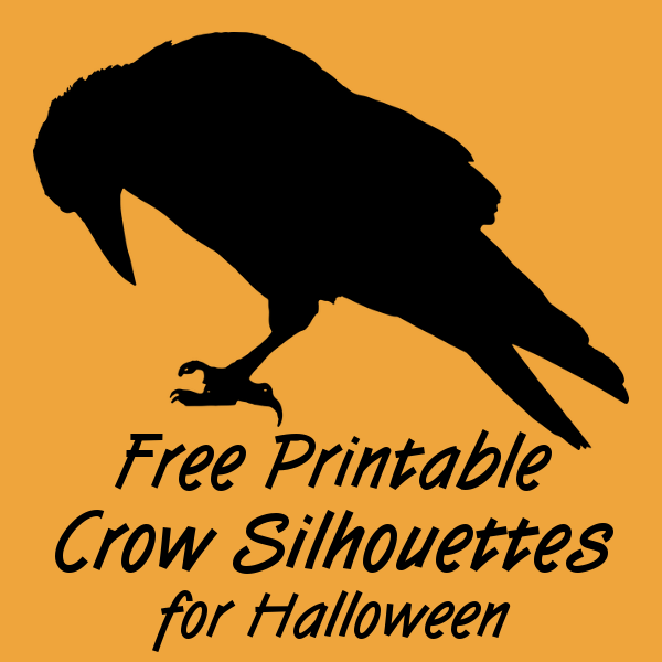 Free Printable Black Crow Silhouettes for Halloween Raven Bird Printables Images Pictures
