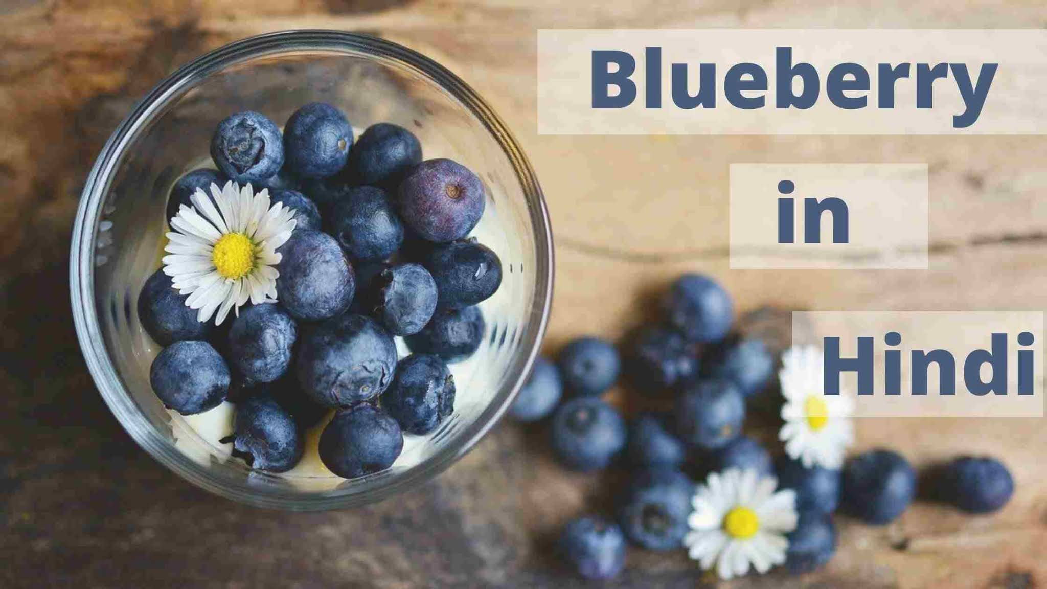 blueberry-in-hindi